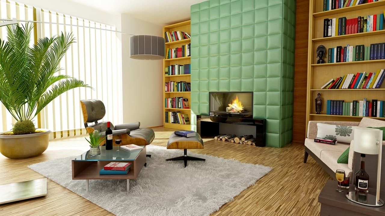 picture of an interior living room
